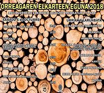 Nafarren Eguna 2018